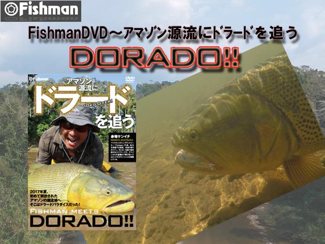 フィッシュマン DVD ドラード